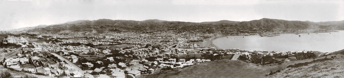 Wellington 1886 from Mt Victoria